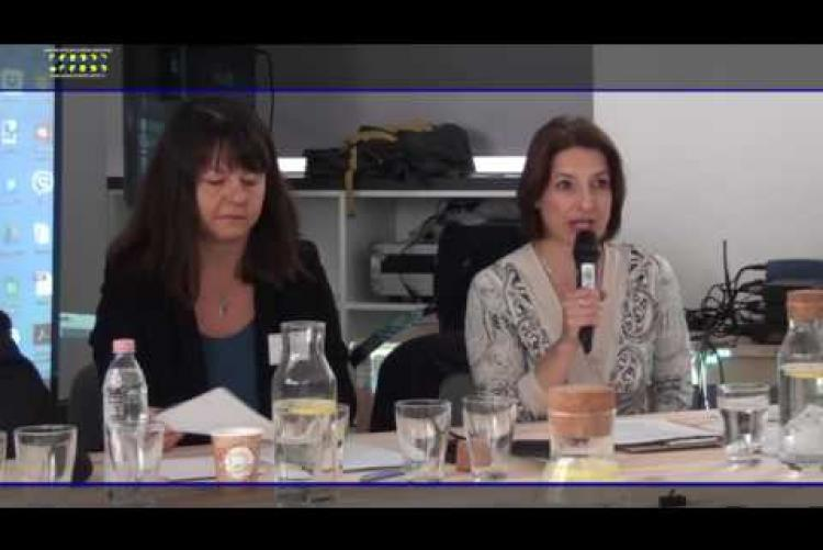 Embedded thumbnail for V4 EUROPE PIECES OF POPULISM-Opening remarks_François PAULI, Zsuzsanna SZELÉNYI